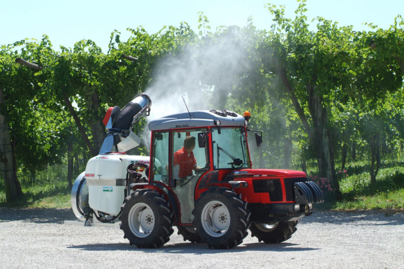 Carraro Traktor im Weinbau